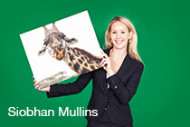 Siobhan Mullins